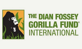 Dian Fossey Foundation