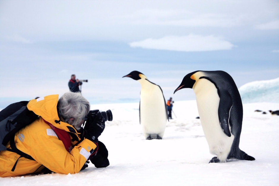 Wildlife Photographer Shooting Emperor Penguins Up Close