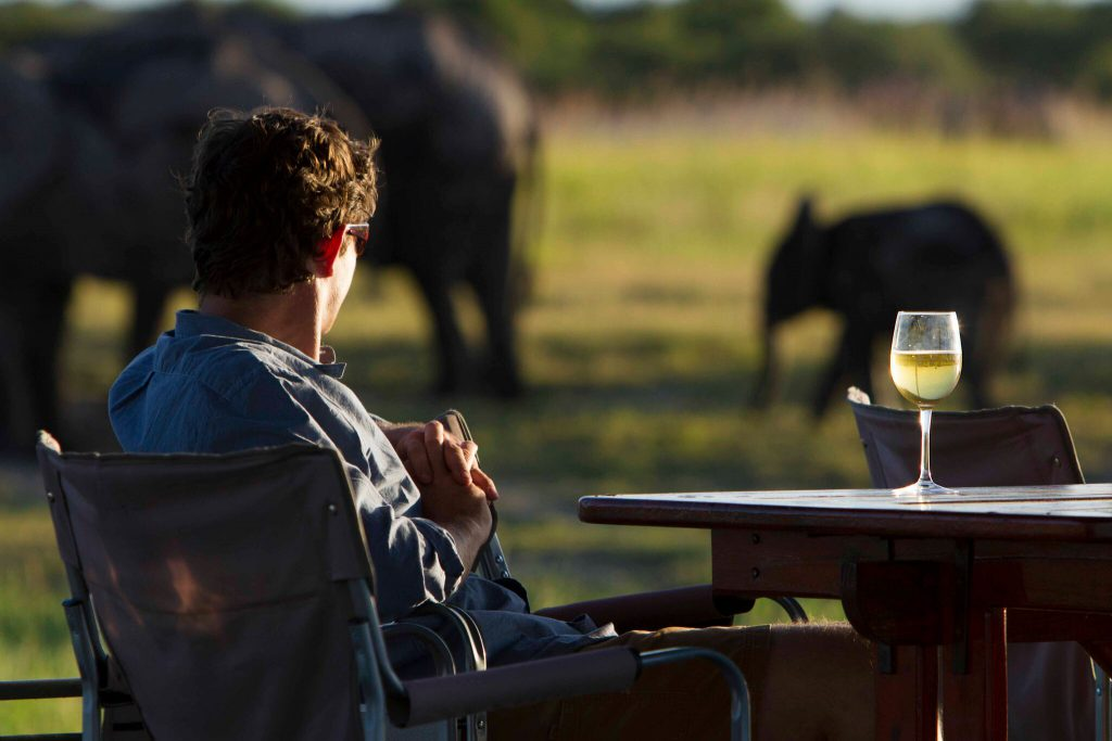 Green season and a young elephant in botswana