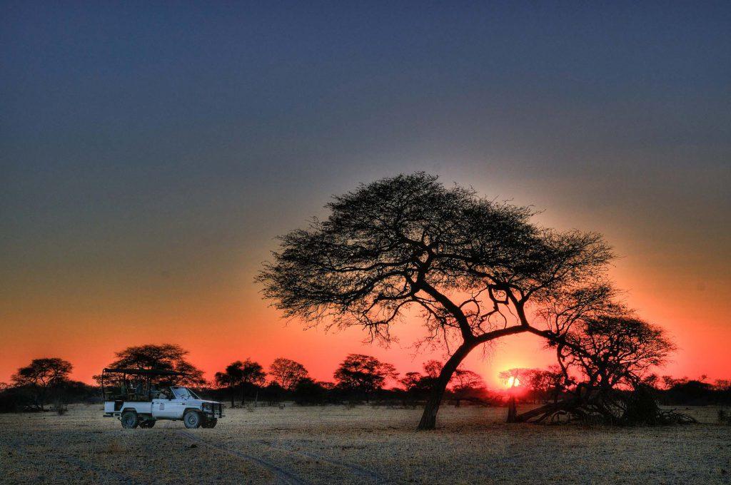 A classic african safari sunset