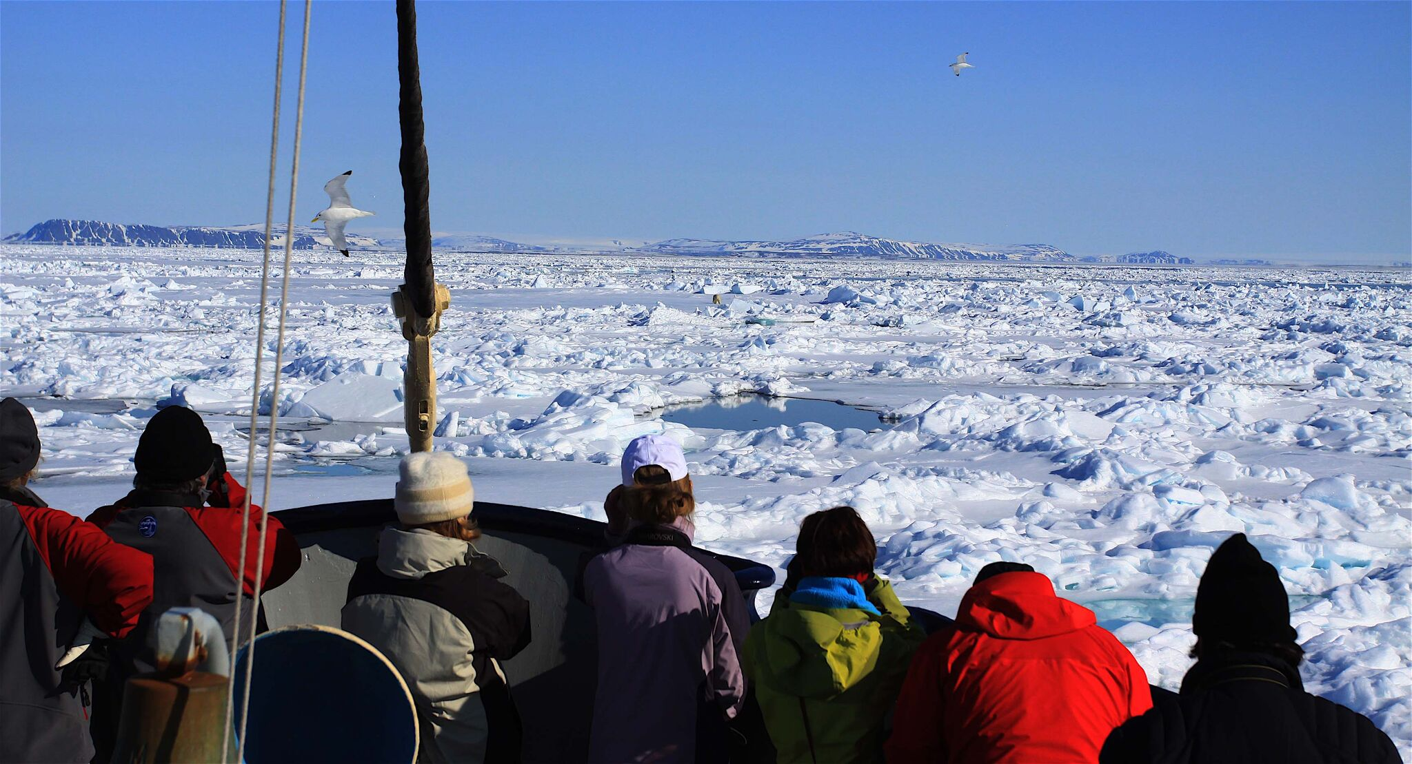 people wearing warm hats on deck on an antarctic cruise