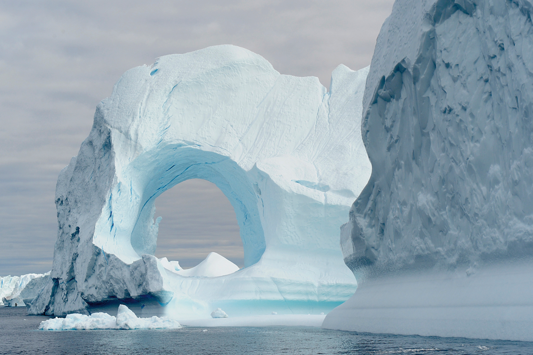 The Icebergs in Greenland's Disko Bay