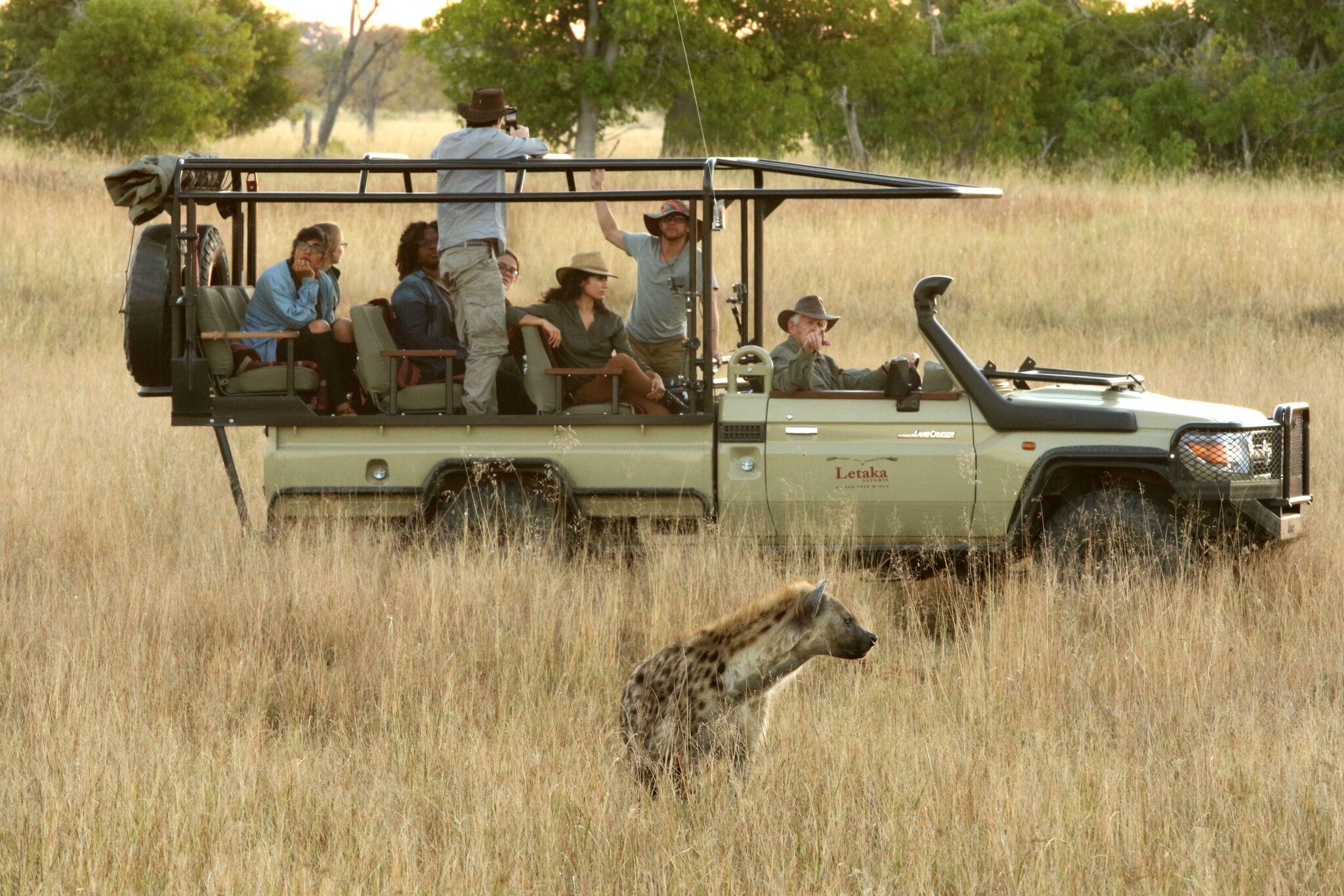 vehicles used on mobile safari
