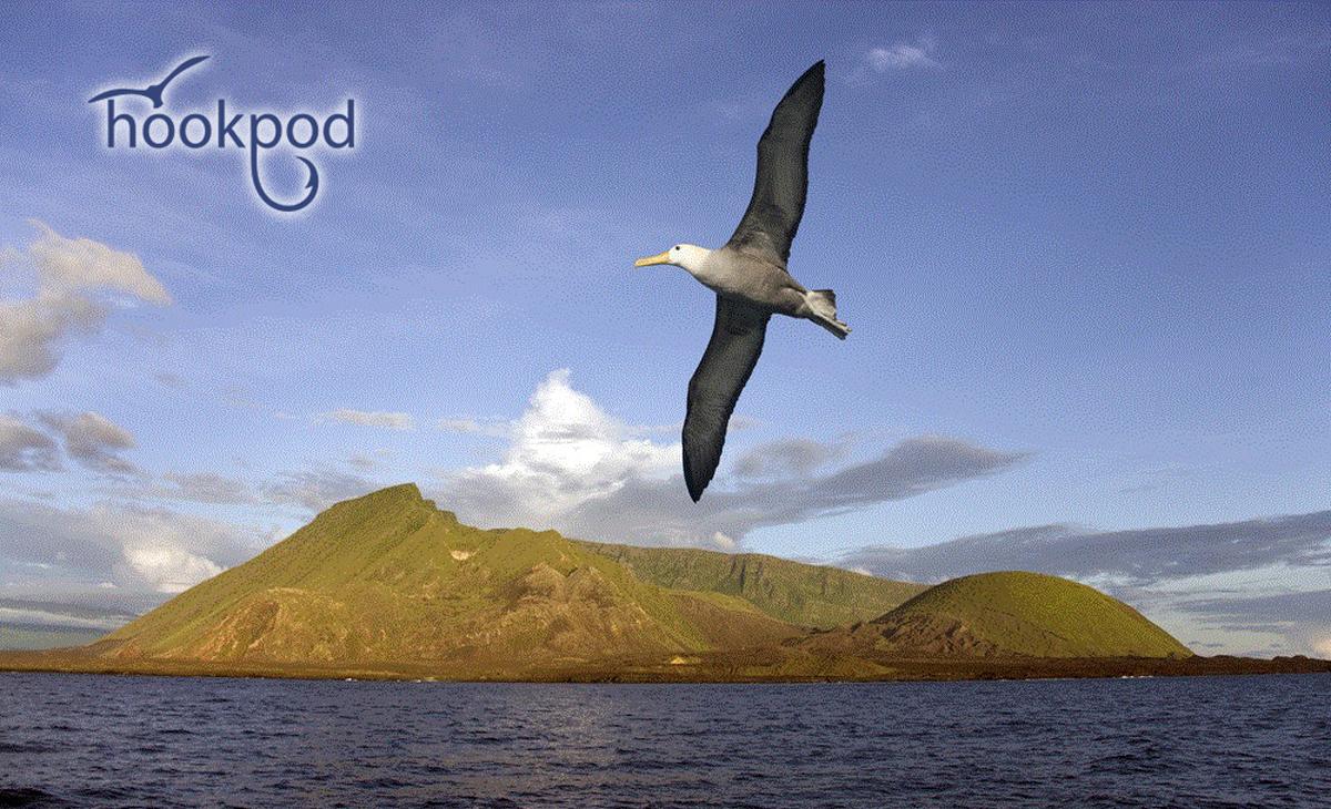 The Hookpod Albatross