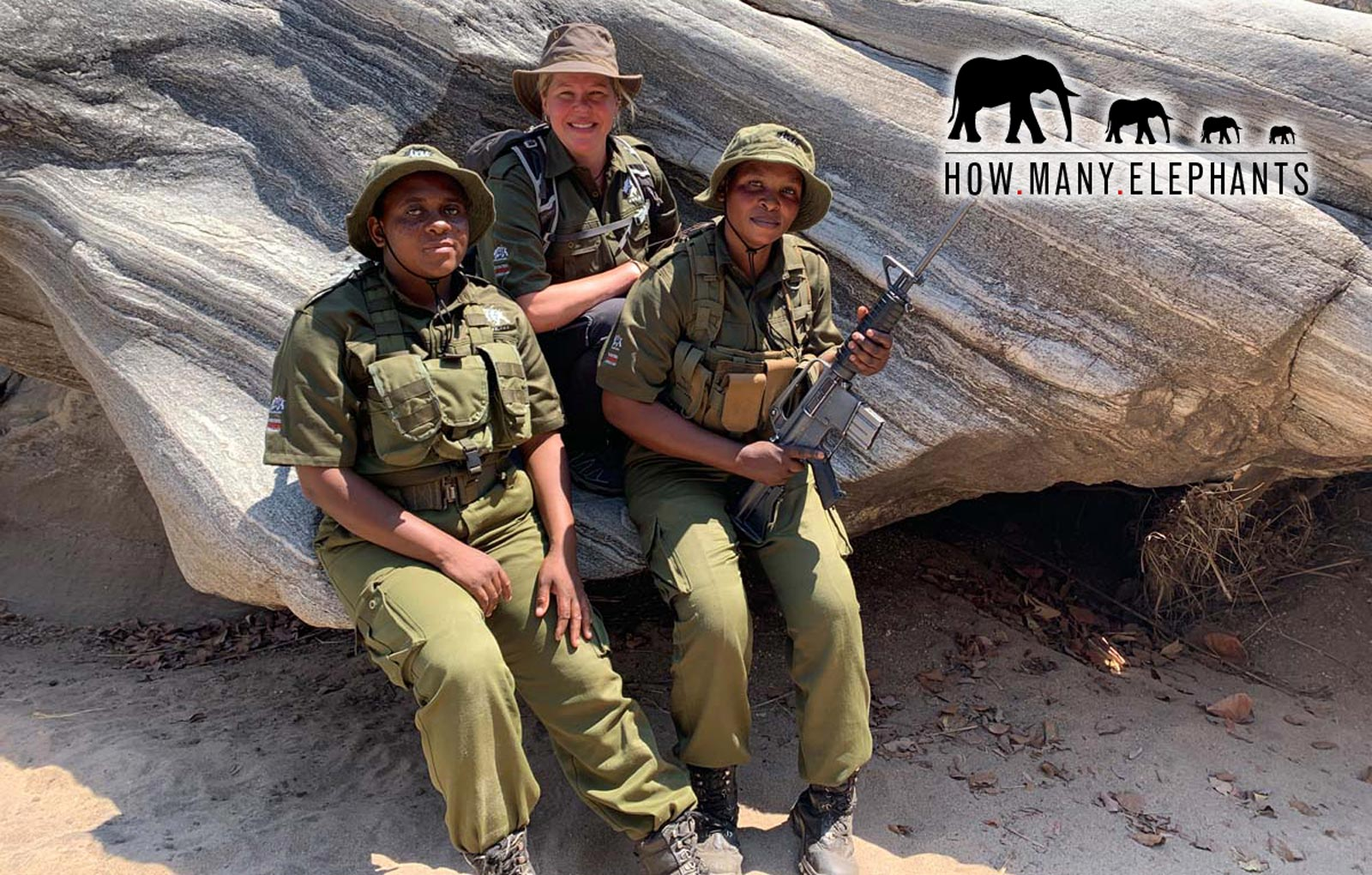 Holly Budge - How Many Elephants