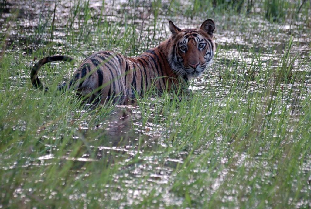 andhavgarh National Park